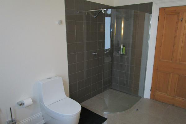 Rosevears bathroom renovation shower